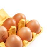 Geïsoleerde het Ei van de bruine Eierenkip Royalty-vrije Stock Afbeeldingen