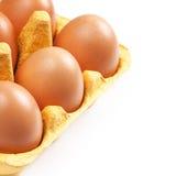 Geïsoleerde het Ei van de bruine Eierenkip Stock Fotografie