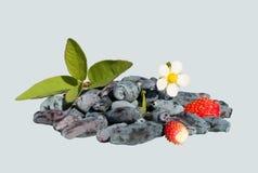 Geïsoleerde kamperfoelie en aardbeien Stock Foto