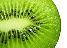 Geïsoleerde kiwi Royalty-vrije Stock Foto's