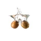 Geïsoleerde kiwiplons op water, Royalty-vrije Stock Afbeelding