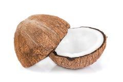Geïsoleerde kokosnoten Royalty-vrije Stock Afbeeldingen