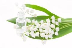 Geïsoleerde lelietje-van-dalenessentie - concept voor aromatherapy royalty-vrije stock afbeelding