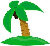 Geïsoleerde mooie palm met kokosnoten op witte achtergrond royalty-vrije illustratie
