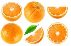 Geïsoleerde oranje inzameling stock afbeeldingen
