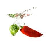 Geïsoleerde peperplons op water, Stock Fotografie