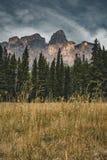 Geïsoleerde Piek en omringende bergen en bossen in het Nationale Park van Banff in Rocky Mountains in Alberta, Canada royalty-vrije stock foto's