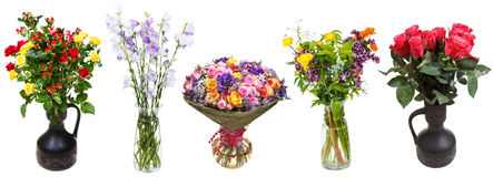 Geïsoleerde reeks bossen van bloemen in vazen royalty-vrije stock afbeelding