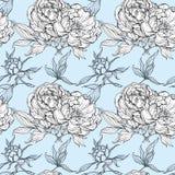 Geïsoleerde reeks magnoliaknoppen en bladeren royalty-vrije illustratie