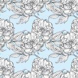 Geïsoleerde reeks magnoliaknoppen en bladeren vector illustratie