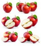Geïsoleerde reeks rijpe rode appelen met groene bladeren Stock Fotografie