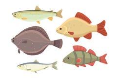 Geïsoleerde riviervissen Reeks zoetwater overzeese beeldverhaalvissen Fauna oceaan vectorillustratie Stock Afbeeldingen