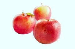 Geïsoleerde rode appel Royalty-vrije Stock Foto's