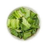 Geïsoleerde Romaine Lettuce Bowl Stock Foto's