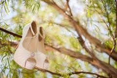 Geïsoleerde roze huwelijksschoen op boomtak Stock Foto