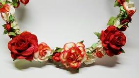 Geïsoleerde rozen Stock Fotografie