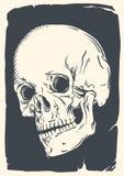 Geïsoleerde schedelillustratie op wijnoogst gebroken document royalty-vrije illustratie