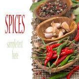 Geïsoleerde Spaanse peper, knoflook en droge peper, Stock Afbeeldingen