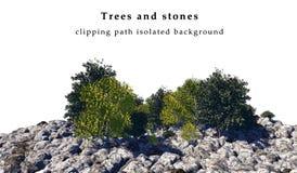 Geïsoleerde stenen en bomen Stock Afbeeldingen
