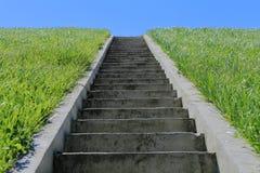 Geïsoleerde treden, groen gras, blauwe hemel Stock Afbeeldingen