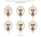 Geïsoleerde vastgestelde aapsnuiten in lineaire stijl en verschillende glazen vector illustratie