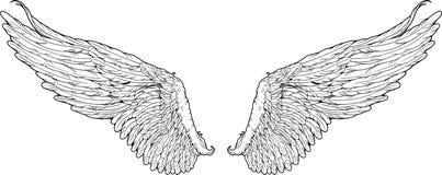 Geïsoleerde vleugels grafische stijl Royalty-vrije Stock Foto's