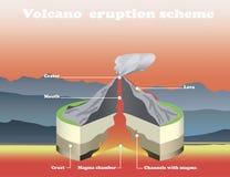 Geïsoleerde vulkaanuitbarstingdwarsdoorsnede Vector grafische informatie Hete lava vectorillustratie royalty-vrije illustratie