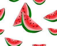 Geïsoleerde watermeloen, Watermeloenvector Royalty-vrije Stock Afbeelding
