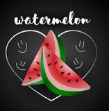 Geïsoleerde watermeloen, Watermeloenvector Stock Afbeelding