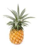 Geïsoleerdea ananas Royalty-vrije Stock Afbeeldingen