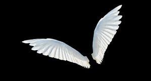 Geïsoleerdea vleugels Stock Afbeeldingen