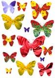 Geïsoleerdea vlinder Stock Foto