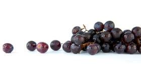 Geïsoleerdeb druiven Royalty-vrije Stock Foto