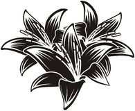 Geïsoleerdeb vector tropische bloemen Royalty-vrije Stock Foto's