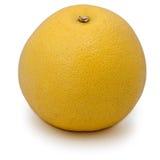 Geïsoleerdec grapefruit Royalty-vrije Stock Foto's