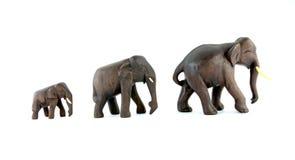Geïsoleerded de olifanten van de familie Royalty-vrije Stock Foto