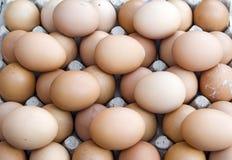 Geïsoleerded groep eieren Royalty-vrije Stock Foto's