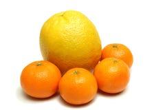 Geïsoleerded sinaasappel en mandarins Stock Afbeelding