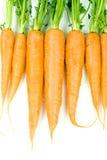 Geïsoleerded wortelen Stock Foto