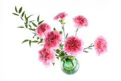 Geïsoleerdee bloemen Stock Foto