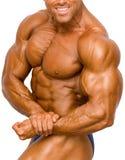 Geïsoleerdee Bodybuilder Royalty-vrije Stock Foto