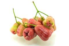 Geïsoleerdee djamboevruchten Stock Foto