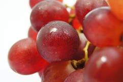 Geïsoleerdee druiven Royalty-vrije Stock Fotografie