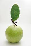 Geïsoleerdee het fruit van de guave Stock Foto