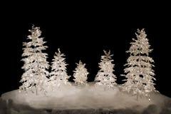 Geïsoleerdee kerstbomen, Stock Foto's