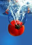 Geïsoleerdee tomaten Stock Foto