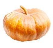 Geïsoleerdeg de pompoen van Halloween Stock Afbeeldingen