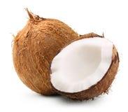 Geïsoleerdeg kokosnoot royalty-vrije stock foto's
