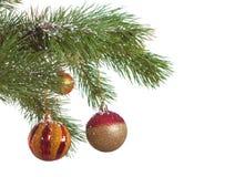 Geïsoleerdel de spar van Kerstmis Stock Afbeelding