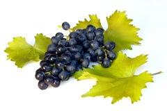 Geïsoleerdel druiven Stock Fotografie